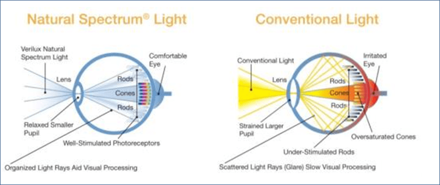 verilux giveaway eye strain image