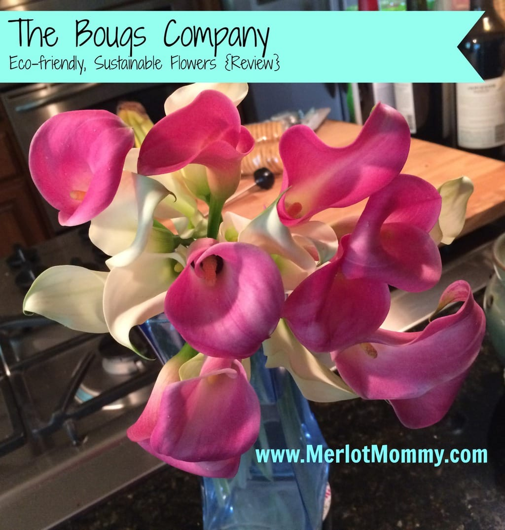 Get Beautiful Flowers from The Bouqs Company {Review}