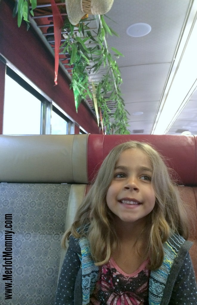 Dinosaur Train Mt Hood Railroad