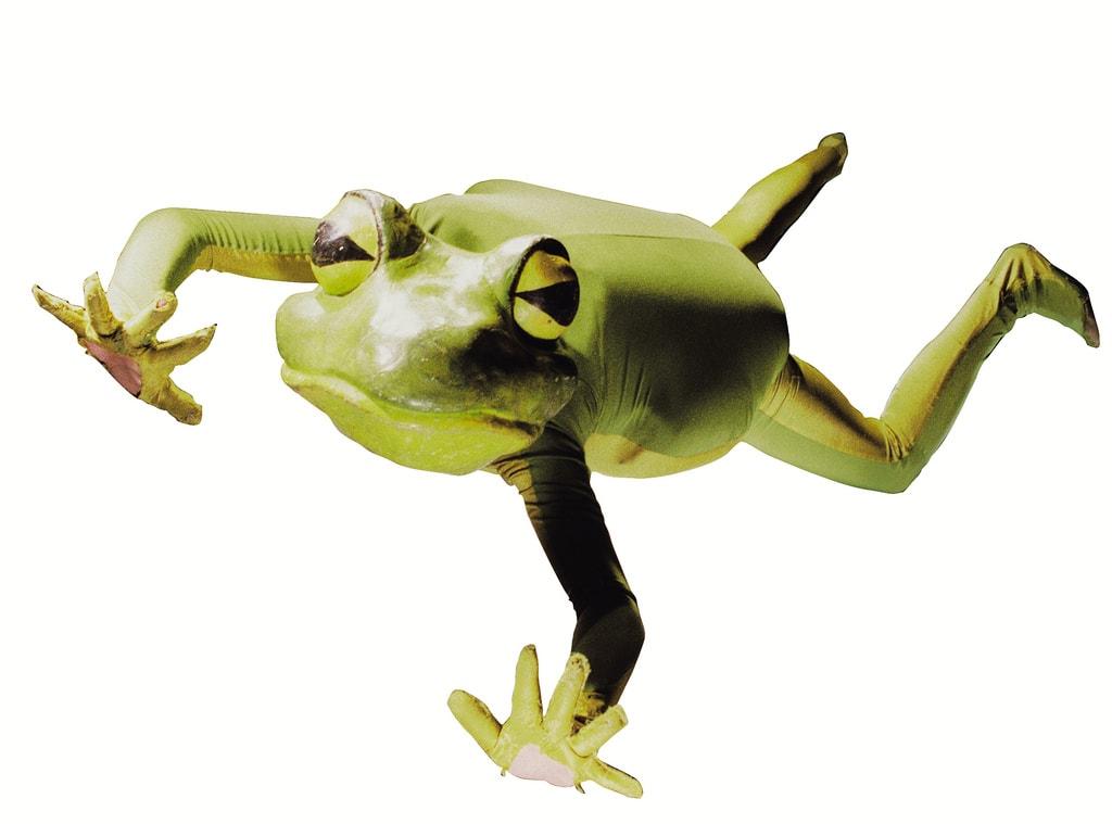 Frogz at Imago Theatre in Portland