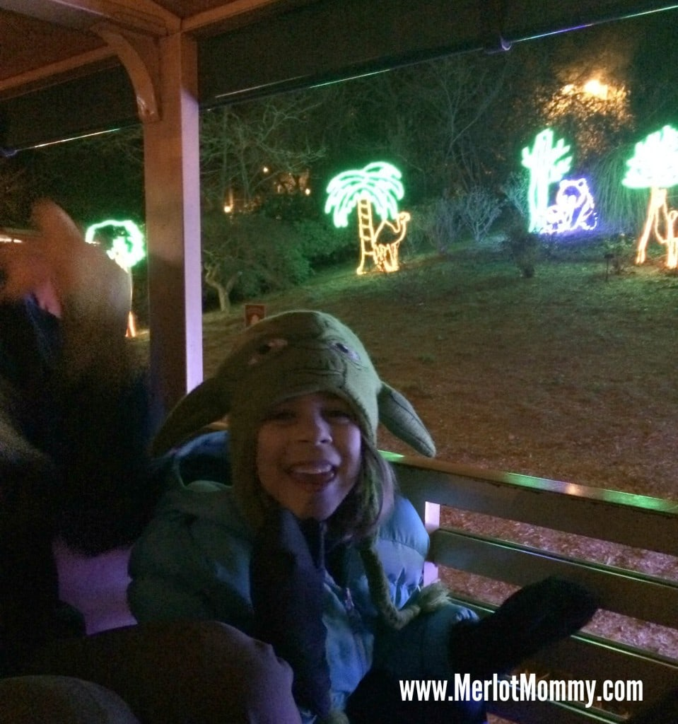Visit ZooLights at the Oregon Zoo