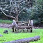 Old farm equipment on Skywalker Ranch