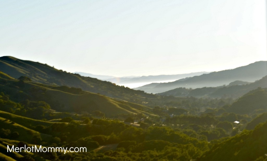 San Francisco Bay from the mountains
