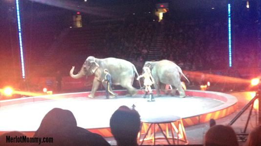 We Loved Ringling Bros. and Barnum & Bailey® BUILT TO AMAZE!
