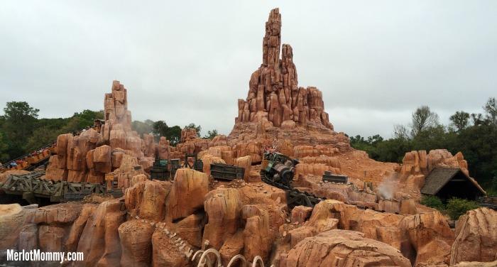 6 Fun Things to Do in Walt Disney World