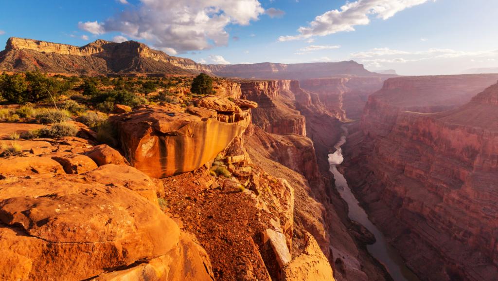grand canyon canva pro