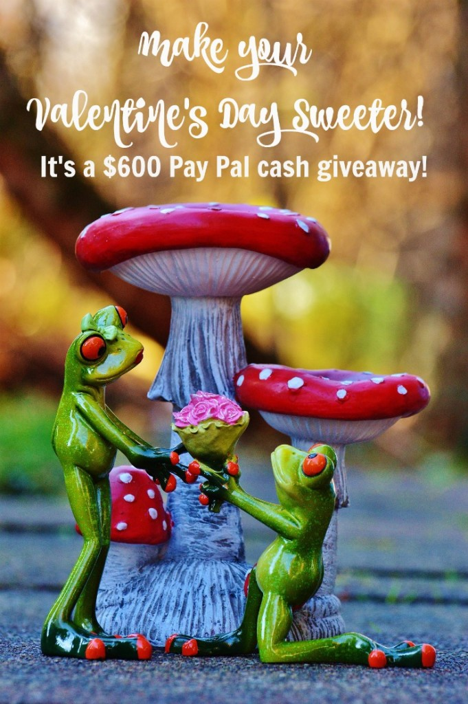 $600 PayPal Cash Giveaway