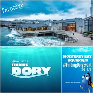 Just Keep Swimming: Finding Dory Event in Monterey Bay