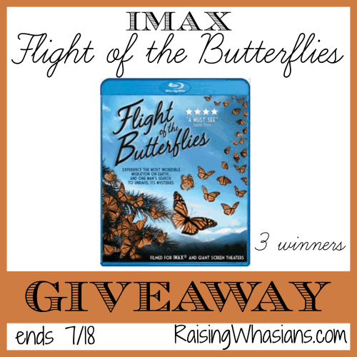 IMAX Flight of the Butterflies Blu-Ray Combo Pack Giveaway