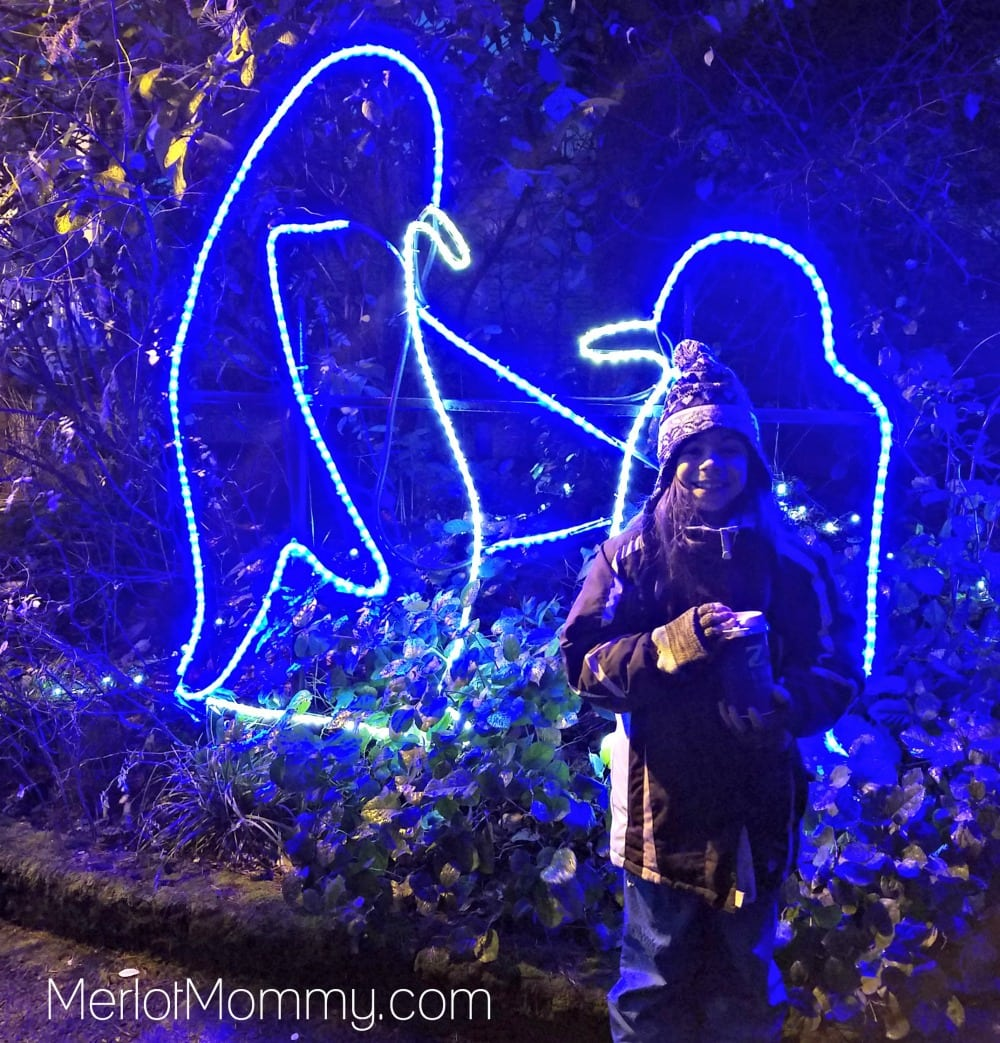 2016 Zoolights at the Oregon Zoo - Penguins