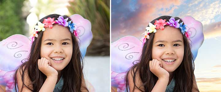 NEW Adobe Photoshop Elements and Premiere Elements