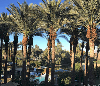 Girls Getaway at the Hyatt Regency Scottsdale Resort & Spa at Gainey Ranch