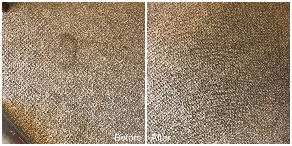 BISSELL ProHeat 2X Revolution Pet Pro Upright Deep Cleaner results