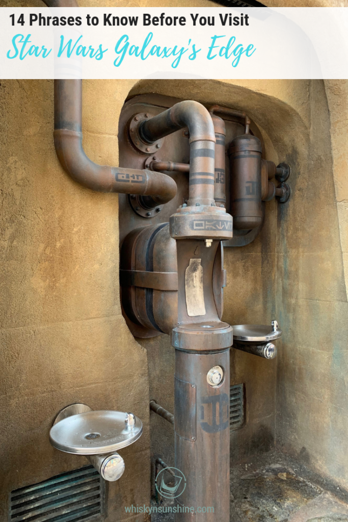 Phrases to Know Before You Visit Star Wars Galaxy's Edge