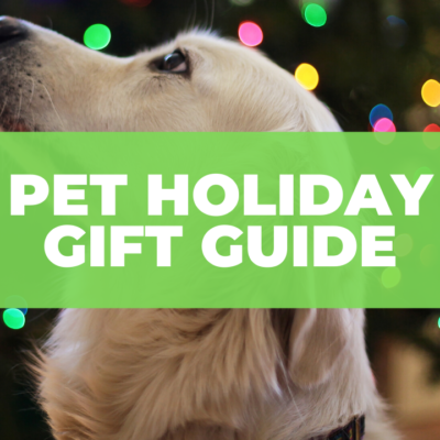 2020 Holiday Gift Guide for Pets