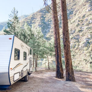 travel trailer at Saw Tooth National Forest