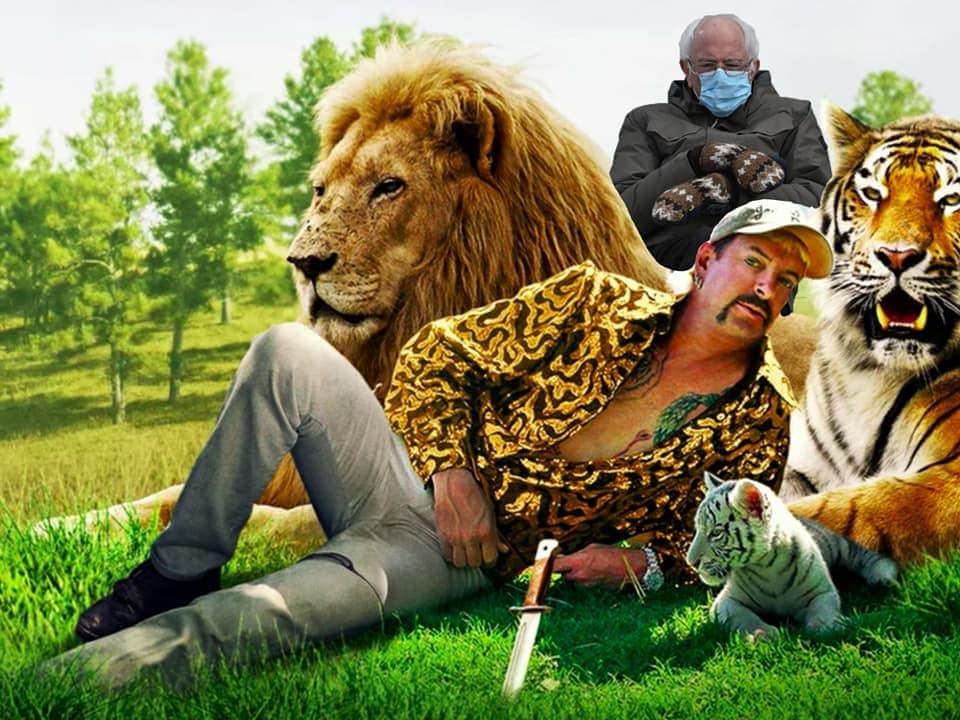 tiger king bernie meme