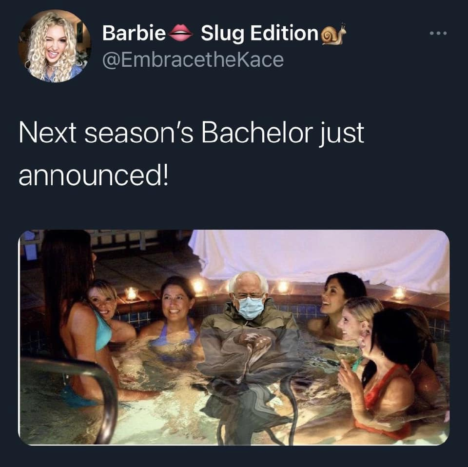 the bachelor bernie meme