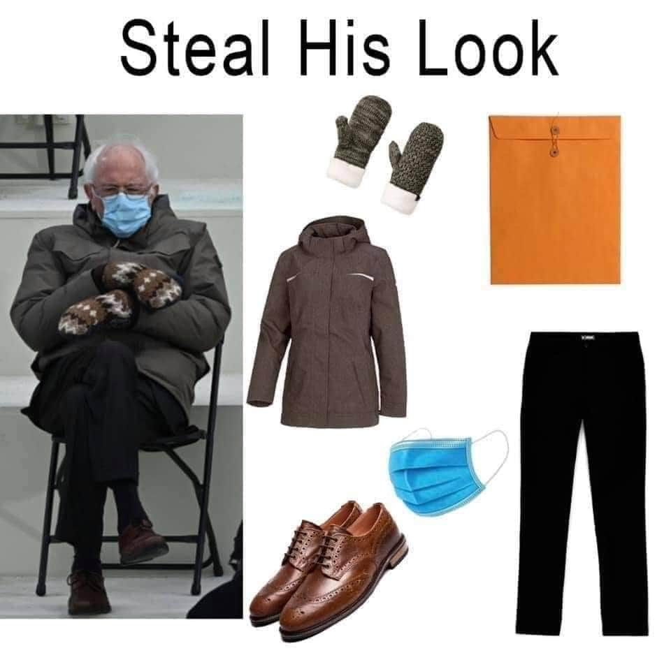 bernie meme steal his look
