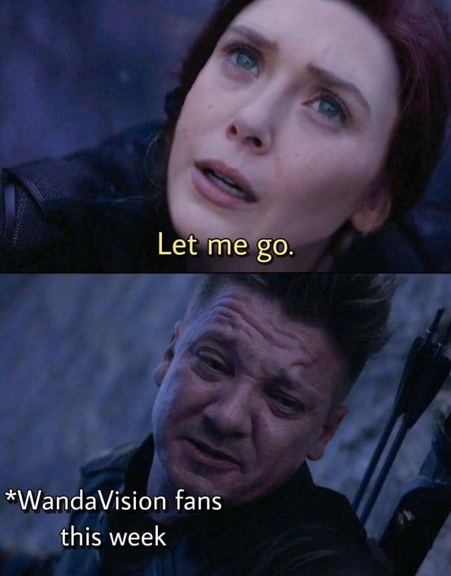 wandavision fans