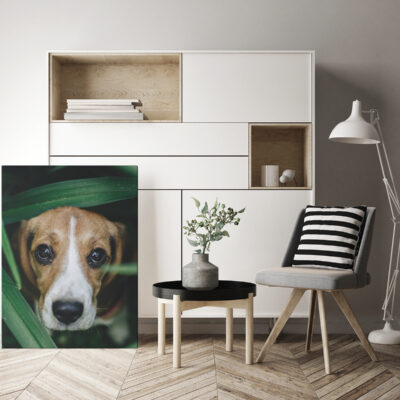 5 Ideas for a Home Family Art Gallery