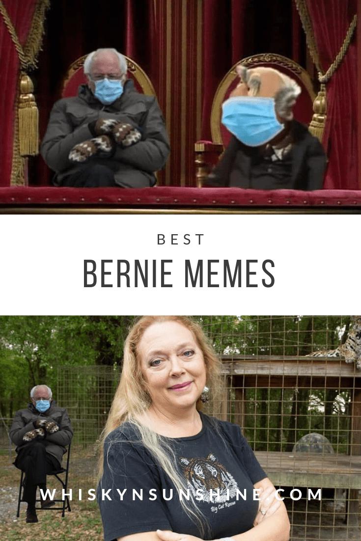 Best Bernie Memes