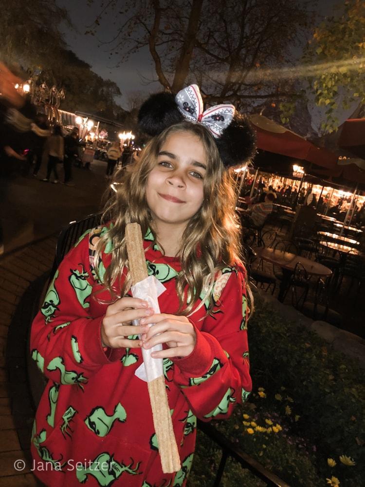 Disney Merriest Nites